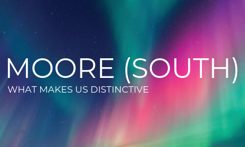 Moore South accountants & business advisers - what makes us distinctive?